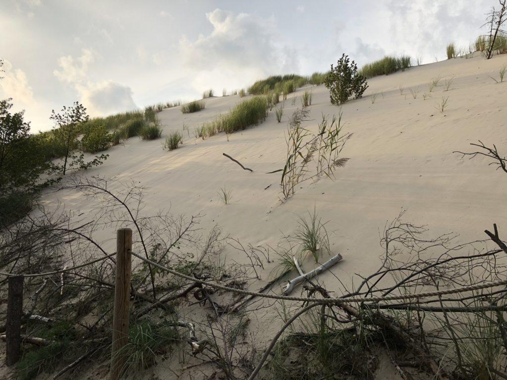 duna polsko
