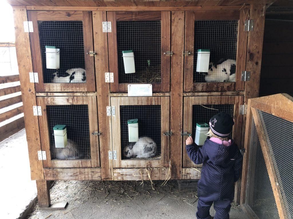 zoopark milíčov rodina cestuje