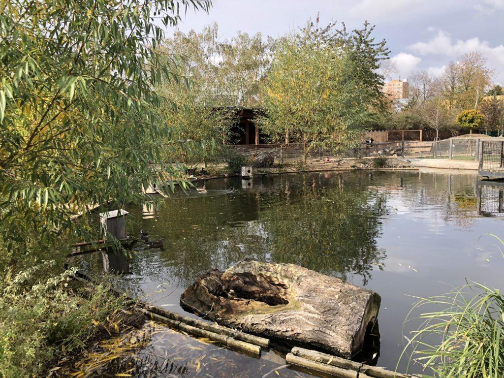 zoopark milíčov rodinacestuje