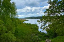 padrťské rybníky výlet