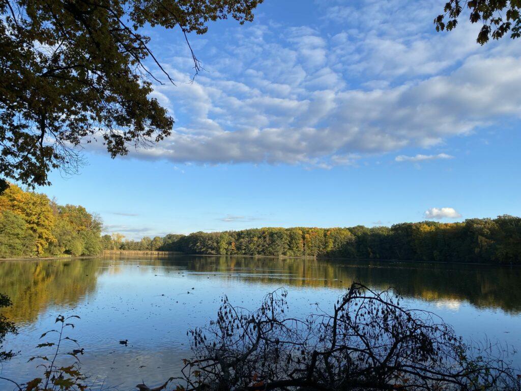 hostivické rybníky
